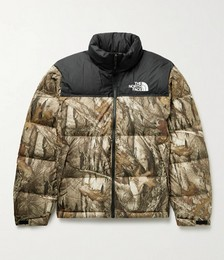 1996 Retro Nuptse Quilted Printed Shell Down Jacket