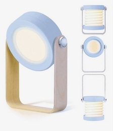 Two-in-one portable lamp