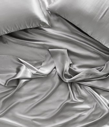 Pure Silk Silver Sheet Set