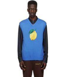 Blue Lemon Vest
