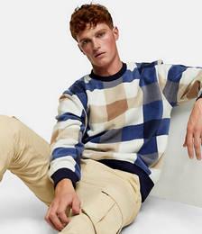 Check Sweatshirt in Blue