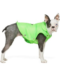 Green Puffer Dog Jacket