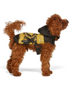 Black Medusa Dog Raincoat