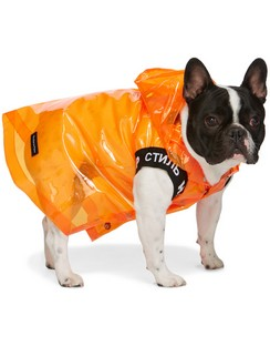 Orange VIP Edition Dog Raincoat
