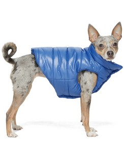 Blue Poldo Dog Couture Edition Insulated Jacket
