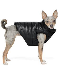 Black Poldo Dog Couture Edition Insulated Jacket