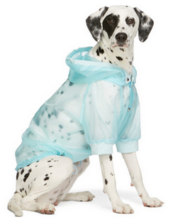 Blue Poldo Dog Couture Edition Waterproof Coat