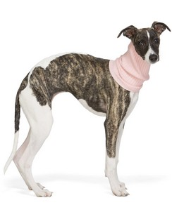 Pink Nonna Turtleneck Dog Collar