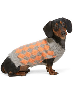 SSENSE Exclusive Grey & Orange Dog Sweater
