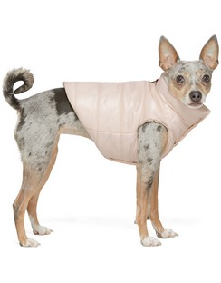 Pink Poldo Dog Couture Edition Vest